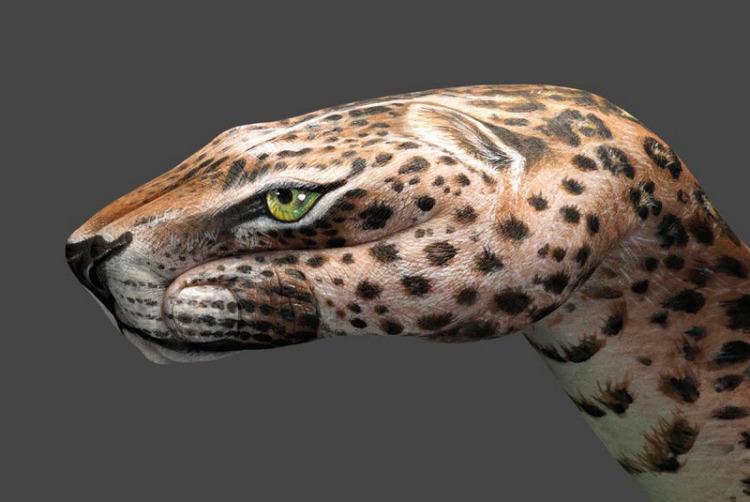 GUIDO-DANIELE-Hand-Painted-Body-Art-jaguar