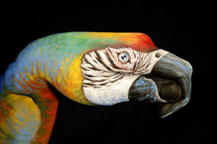 Parrot-hand art